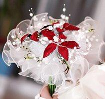 Bride carrying a red and white bouquet