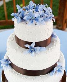 https://cf.ltkcdn.net/weddings/images/slide/105950-216x265-blueflower9.jpg