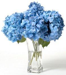 https://cf.ltkcdn.net/weddings/images/slide/105951-233x265-blueflower12.jpg