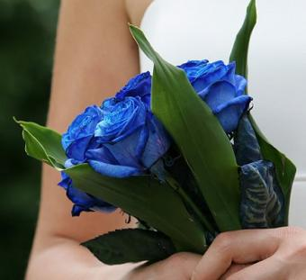 https://cf.ltkcdn.net/weddings/images/slide/106243-438x400-rose16.jpg