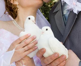 https://cf.ltkcdn.net/weddings/images/slide/106695-490x400-springtheme9.jpg