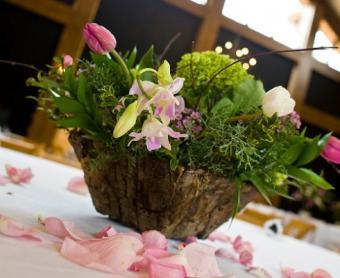 https://cf.ltkcdn.net/weddings/images/slide/106724-490x400-summercenter8.jpg