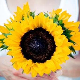 https://cf.ltkcdn.net/weddings/images/slide/106741-398x400-summerbouquet15.jpg