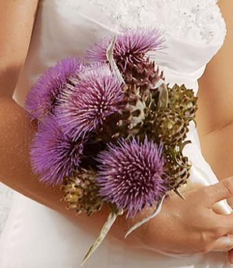https://cf.ltkcdn.net/weddings/images/slide/106825-348x400-purple6.jpg