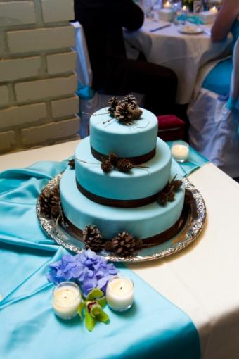 https://cf.ltkcdn.net/weddings/images/slide/106980-424x636r1-BluePineconeCake.jpg