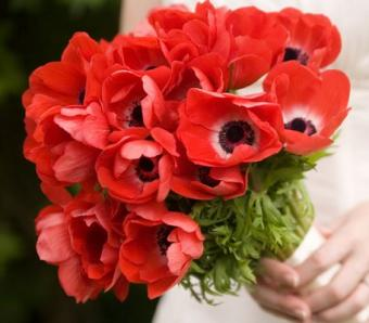 https://cf.ltkcdn.net/weddings/images/slide/107065-456x400-redbouquet11.jpg