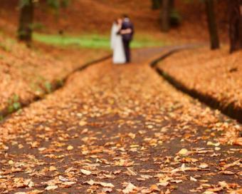 https://cf.ltkcdn.net/weddings/images/slide/113106-500x400-falldeco1.jpg