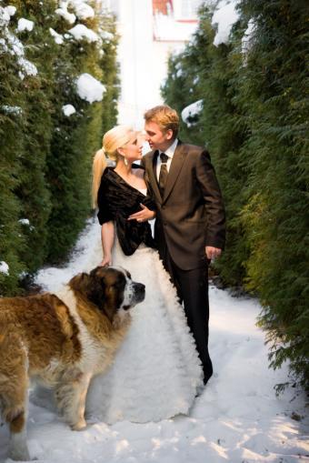 https://cf.ltkcdn.net/weddings/images/slide/141533-566x848r1-Winter-Outdoors.jpg