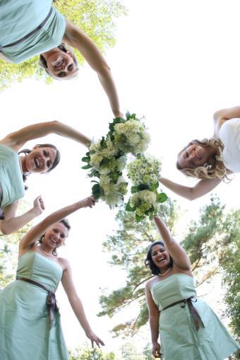 Brown and Blue Weddings