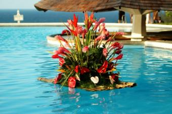 https://cf.ltkcdn.net/weddings/images/slide/143016-638x424r1-Tropical-Pool-Flowers1.jpg