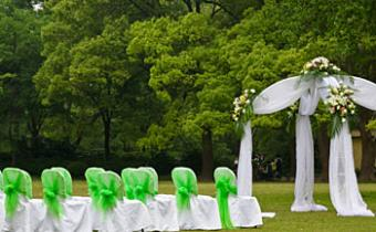 green_wedding.jpg