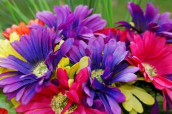 silk daisies