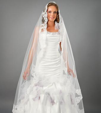 https://cf.ltkcdn.net/weddings/images/slide/176158-757x850-Long-Wedding-Veil.jpg