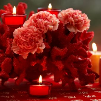 https://cf.ltkcdn.net/weddings/images/slide/226899-850x850-red-coral-and-carnations-centerpiece.jpg