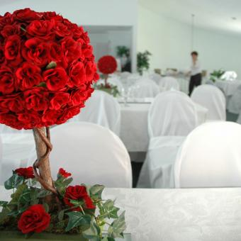 https://cf.ltkcdn.net/weddings/images/slide/226902-850x850-Red-Topiary-Centerpiece.jpg
