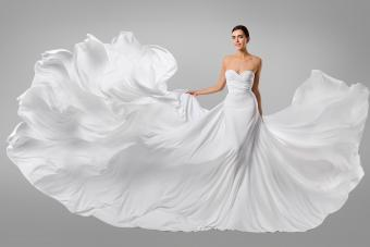 https://cf.ltkcdn.net/weddings/images/slide/236524-850x567-regal-wedding-dress.jpg