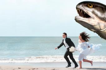 https://cf.ltkcdn.net/weddings/images/slide/237796-850x567-big-fish.jpg