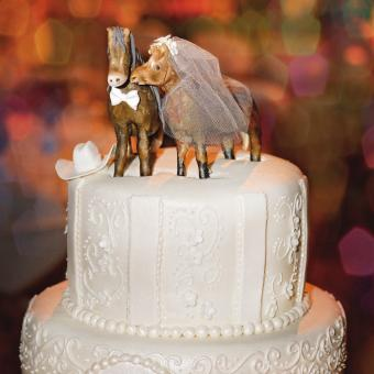 Bride and groom horse toppers