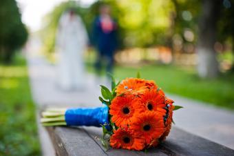 bright orange Gerbera daisy bouquet