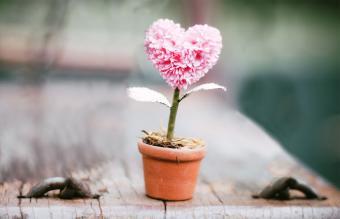 tiny topiary favor