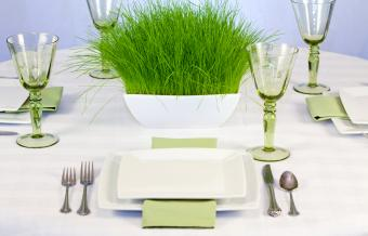 https://cf.ltkcdn.net/weddings/images/slide/249563-1246x800-grass.jpg