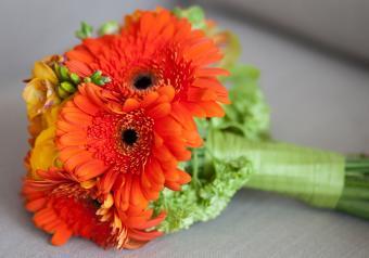 https://cf.ltkcdn.net/weddings/images/slide/250745-850x595-22_Gerber_Daisy_autumn.jpg