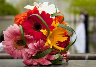 Pictures of Gerbera Daisy Wedding Bouquets