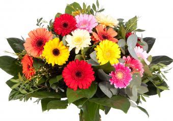 https://cf.ltkcdn.net/weddings/images/slide/250763-850x595-16_bouquet_multi_color.jpg
