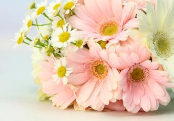 https://cf.ltkcdn.net/weddings/images/slide/250765-850x595-18_all_daisy_bouquet.jpg