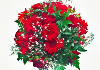 https://cf.ltkcdn.net/weddings/images/slide/250767-850x595-20_bouquet_red_daisy_roses.jpg