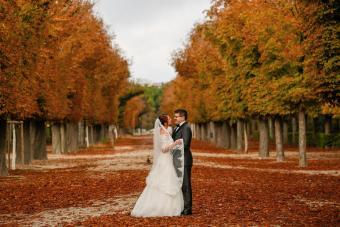 Autumn Theme Weddings
