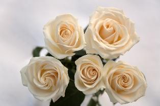 Wedding_flowers_17.jpg