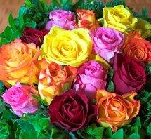 Red, orange, purple, and yellow rose bridal bouquet
