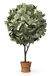 An Artificial Wedding Tree With Money Attached