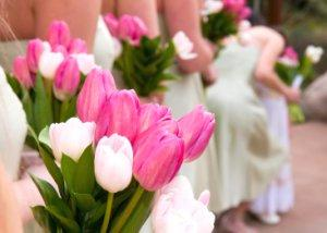 Bridesmaids holding pink and white spring tulips