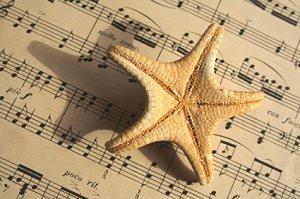 Bchmusic1.jpg