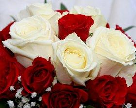 Red and white rose Valentine wedding bouquet