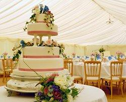 Inexpensive ideas for wedding decorations let your cake be a decoration junglespirit Gallery