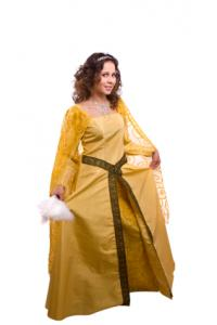 gold medieval style gown