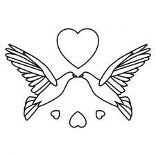 Black and white doves