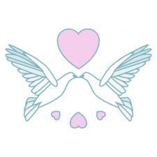 Doves kissing