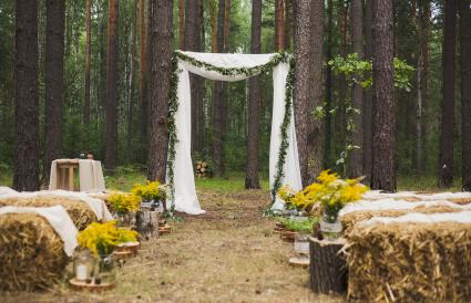 Old autumn wood for wedding ceremony