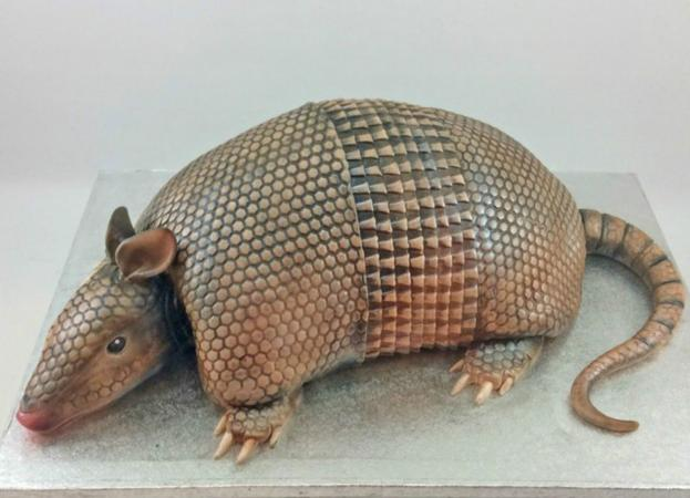 Realistic-looking Armadillo groom's cake