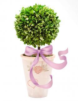 green topiary