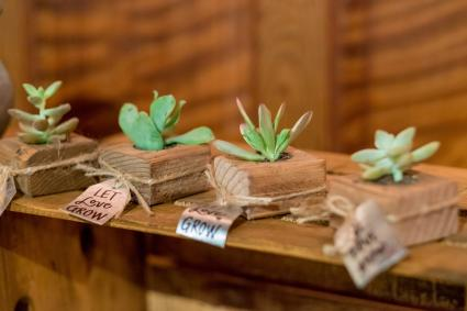 Succulent in holder wedding favors