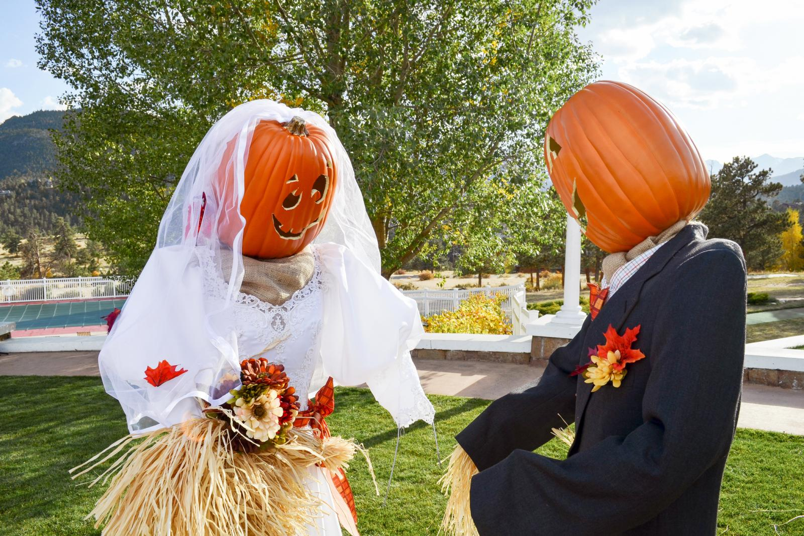 Scarecrows Dressed As Bride And Groom