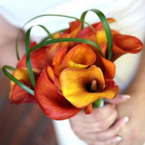 An orange and yellow Calla lily bridal bouquet