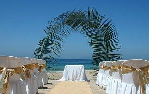 Palm frond arch for a beach wedding