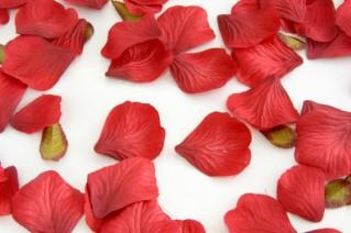 Red silk rose petals for a wedding