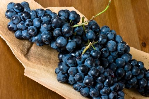 https://cf.ltkcdn.net/wine/images/slide/112414-509x339-Syrah-Grapes.jpg